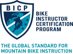 BICP Global Standard Teal image